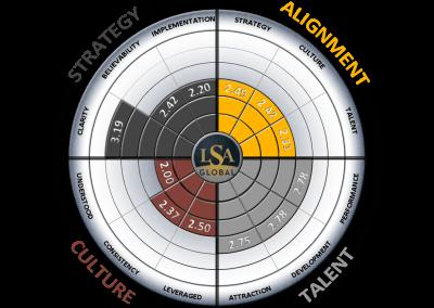LSA-GLOBAL-RADAR-CHART